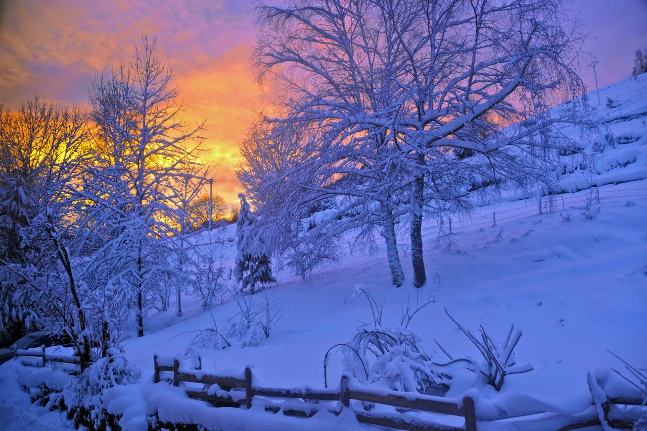 A bright-orange sunset over a snowy, wintry hill